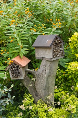 bee shelter