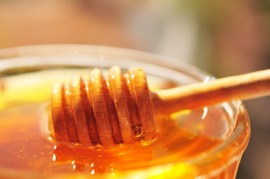 Honey, tasting, honeybees, coconut