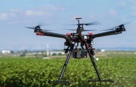 Drones, Agriculture, Bees, Pollinators